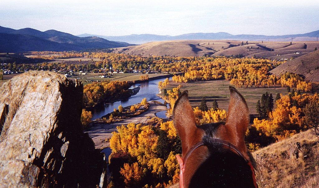 Dunrovin_photo of horse overlooking river - web site