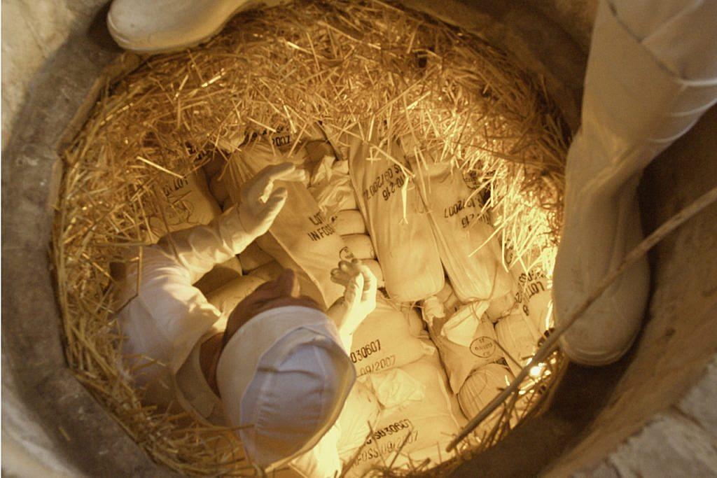 Cheese is buried in a pit in Italy's Sogliano al Rubicone. Credit: Photo Courtesy of Comune di Sogliano