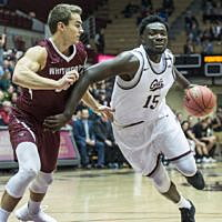 Montana's furious second-half rally comes up just short at Georgia State