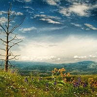 Sustainable Missoula: Continued access to open, public lands requires vigilance, investment