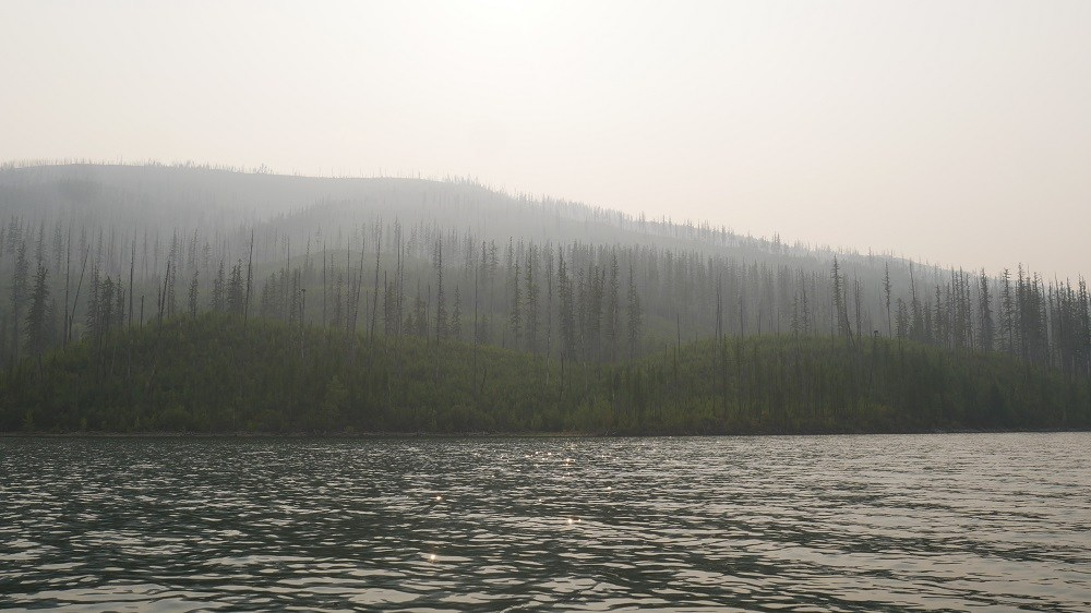 Dispatches from the road: Three miles of Glacier National Park