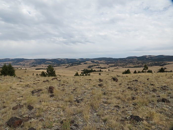 FWP Commission approves cattle grazing on Spotted Dog WMA; Senate confirms last 2 commissioners