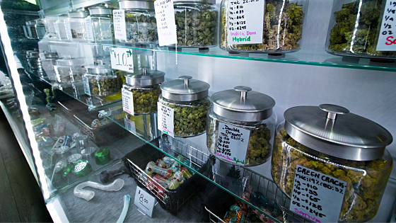 Montana regulators propose new rules on marijuana advertising