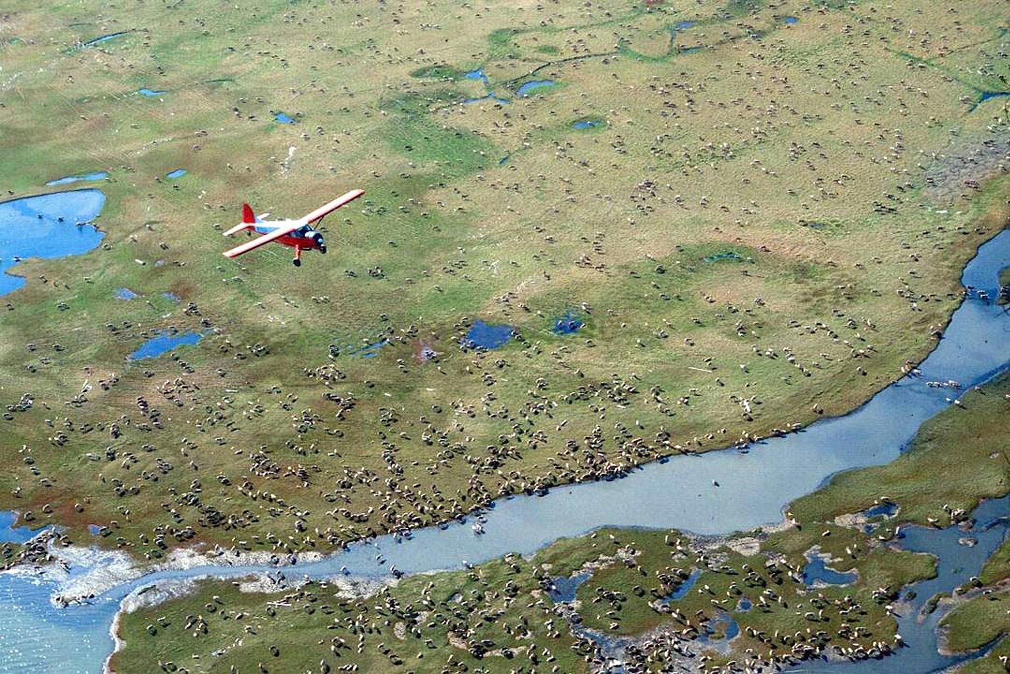 US holds first oil lease sale for Alaska's Arctic refuge